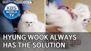 Hyungwook always has the solution for every dog! [Dogs are incredible/ENG/2020.01.21]