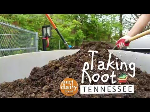 Garden Bed Install at Knoxville Child Care Center - Taking Root Tennessee