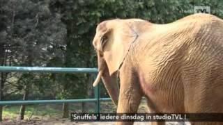 Inge Pauwels brengt een bezoekje aan de Olmense zoo