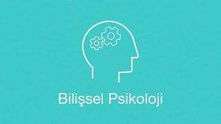 Bilişsel Psikoloji: Zihnimizin Psikolojisi