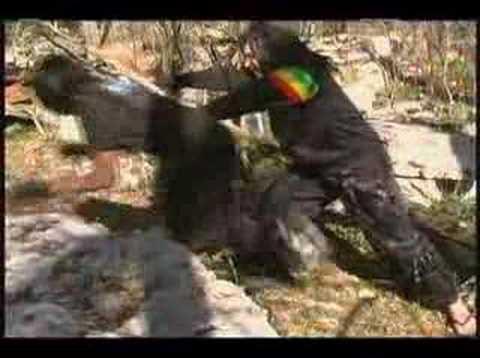 Chinese Rastafarian Chinese Rastafa...