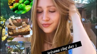 Travel Vlog - Arizona - Day 3 - Markets - Whole Foods -Party Day - Andy Sanders