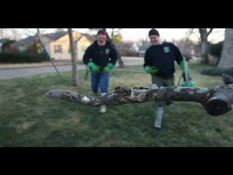 Find Tulsa Weed Control | Tulsa Lawn Service | Greenleaf Lawn 918 640 6405 | greenleaftulsa.com