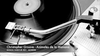 Christopher Groove - Animales de la Manana