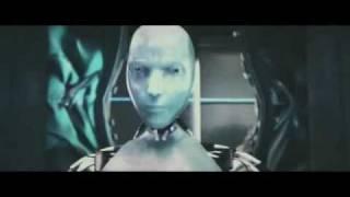 Kung Fu Robots