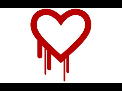 NSA Knew Of Heartbleed Bug, Refused To Protect Americans