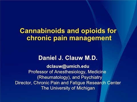 Dr Clauw Cannabinoids And Opioids For Chronic Pain Management