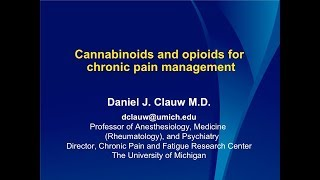 Dr. Clauw – Cannabinoids and opioids for chronic pain management thumbnail
