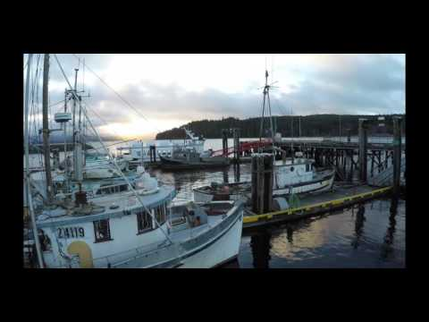 Drone Footage of Sointula Harbour and Townsite on Malcolm Island