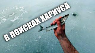 Ищу ХАРИУСА на НОВЫХ МЕСТАХ Зимняя рыбалка на СЕВЕРЕ
