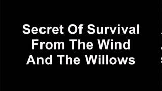 Secret Of Survival From The Wind And The Willows