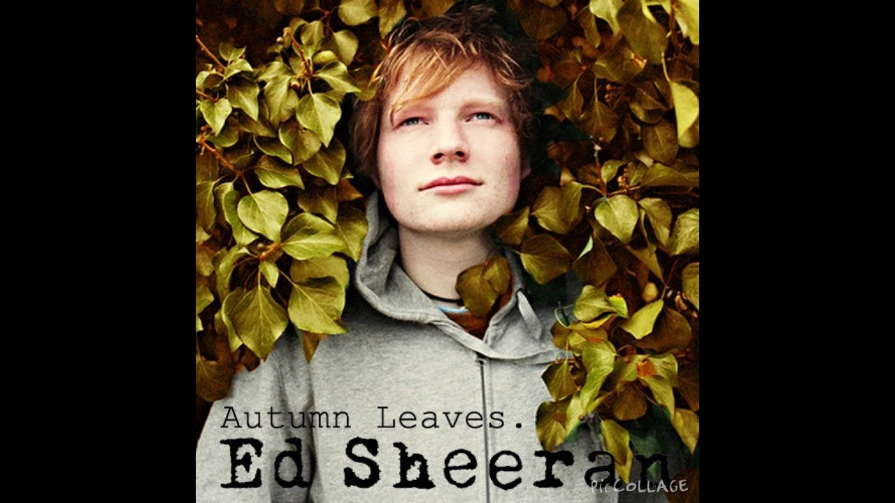 Autumn Leaves Tumblr Ed Sheeran Autumn Leaves By Ed Sheeran
