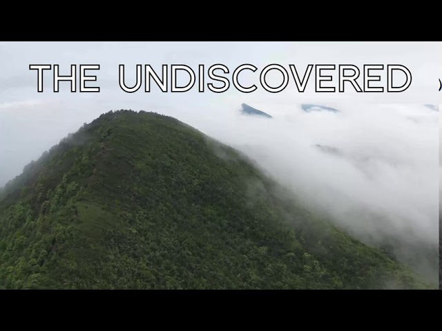 The Undiscovered (extract)