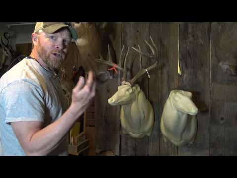 HOW TO CHOOSE THE RIGHT POSE FOR YOUR TROPHY BUCK