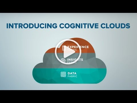 Introducing the Cognitive Cloud Company