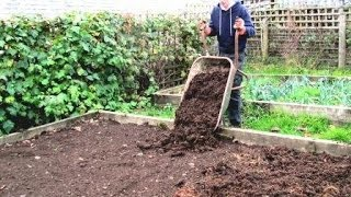 How to Prepare Raised Beds for Growing Vegetables