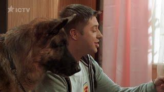 Как пес помог найти любовника жены — На троих — 3 сезон – 1 серия