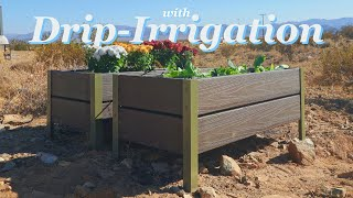 How To Make Self Watering Raised Planters / Garden Beds from Composite Decking