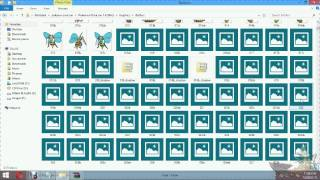 How to install 3d sprite pack in pokemon omicron