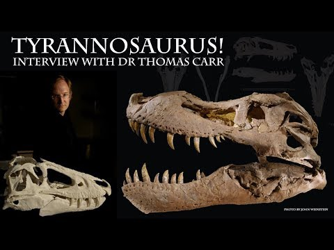 Dr Thomas Carr Interview (pt3) -Tyrannosaurus!//Tyrannosaur Ontogeny//Upcoming Publication