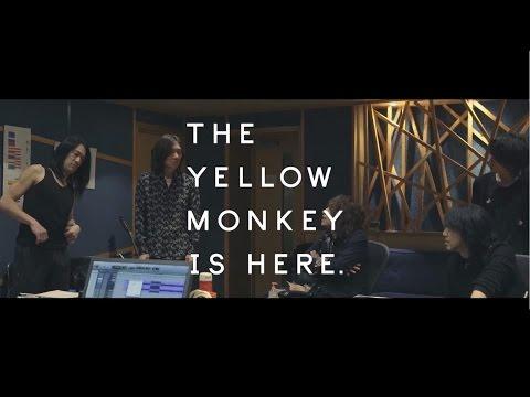 ロザーナ / THE YELLOW MONKEY