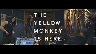 THE YELLOW MONKEY OFFICIAL SITE http://theyellowmonkey.jp ◎ 2017年 ...