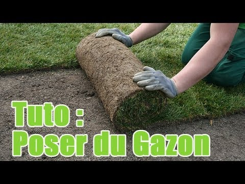 Comment poser du gazon en rouleau youtube for Poser du lino en rouleau