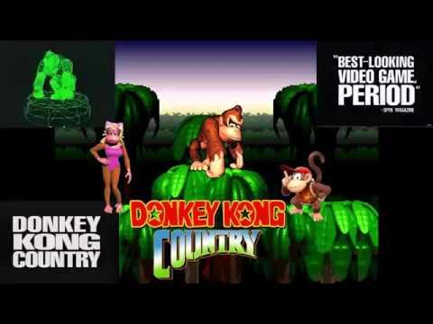 Donkey Kong Country w/ lyrics brentalfloss Cover