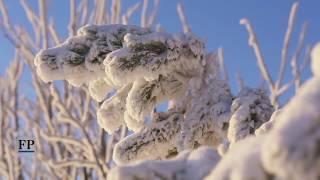 Winteridylle auf dem Fichtelberg