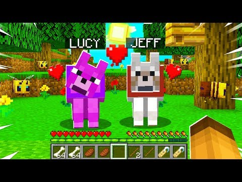I TAMED A *NEW* PUPPY in MINECRAFT! (Episode 5)