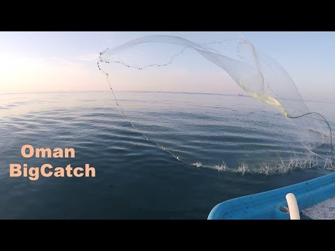 Offshore Fishing for Dimond fish, Kingfish, Barracuda and Trevally fish in Oman