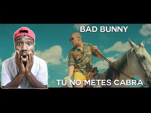 Bad Bunny - Tu No Metes Cabra  Video Reaction