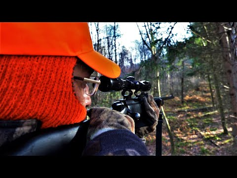 HUNTING WHITETAIL DEER 2019 - Remington 788 In .308 - RON THE LEGEND! Pennsylvania Rifle Season Doe