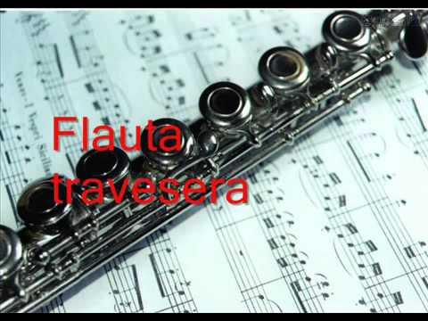 Los instrumentos musicales ( sonido e instrumento ) ~~~