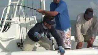 Shark fishing in Miami with Bass 2 Billfish guests Mike and Chrissy
