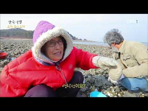 한국기행 - Korea travel_오지, 봄이 오지 5부 봄처럼 그리워 돌아오고_#001