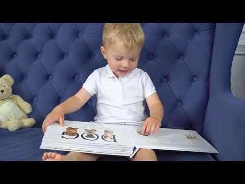 Детские тактильные книги MOO, CAT и DOG автора Мэтью Ван Флит