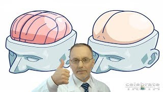 Scientists Discover a Second Brain in your Butt!