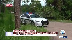 3 arrested in Loxahatchee Groves animal slaughtering case