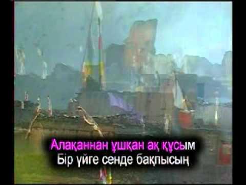 Алақаннан ұшқан аққуым,Kazakh Karaoke, Казахское караоке