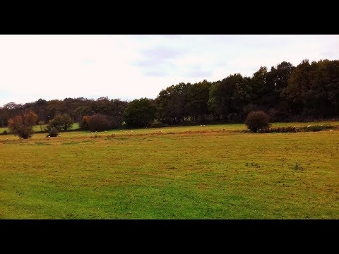 WALKING IN SUFFOLK | PLAYFORD AND THE FYNN VALLEY