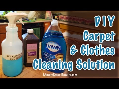 DIY Carpet Stain Remover & DIY Clothing Spot Remover - Peroxide & Dawn