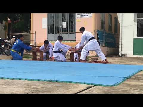 Karate biểu diễn