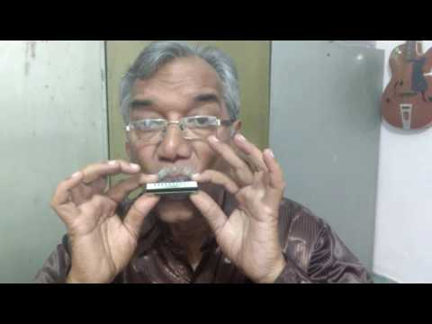 Lesson 5: Ae Dil Hai Mushkil Learning Harmonica Cover | Raje