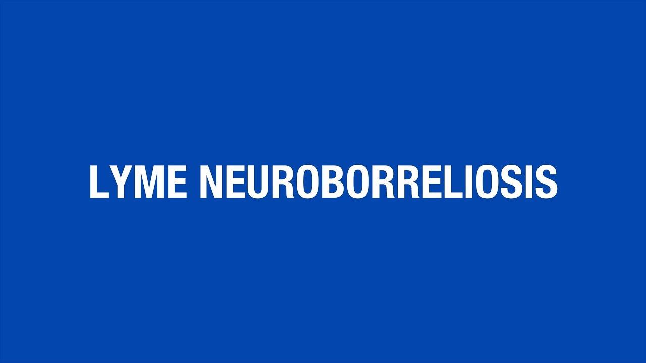 Lyme Neuroborreliosis - Insights