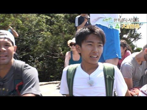 (4)すくすくぽん!SP 世界遺産・屋久島 海と森の大自然旅 出演:加藤清史郎・智恵里・憲史郎