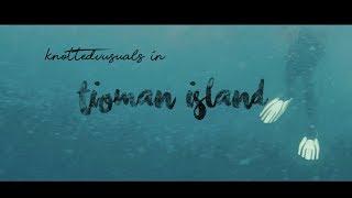 Diving in Tioman Island