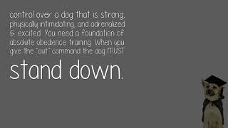 How Do You Train Your Dog To Be Your Personal Protection Dog Yourself?
