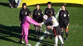 第22回 全日本高等学校女子サッカー選手権大会(ビデオ版)