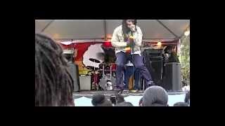 Wild Life  on stage at Irie FM Black History Month  Festival Feb 22,2014